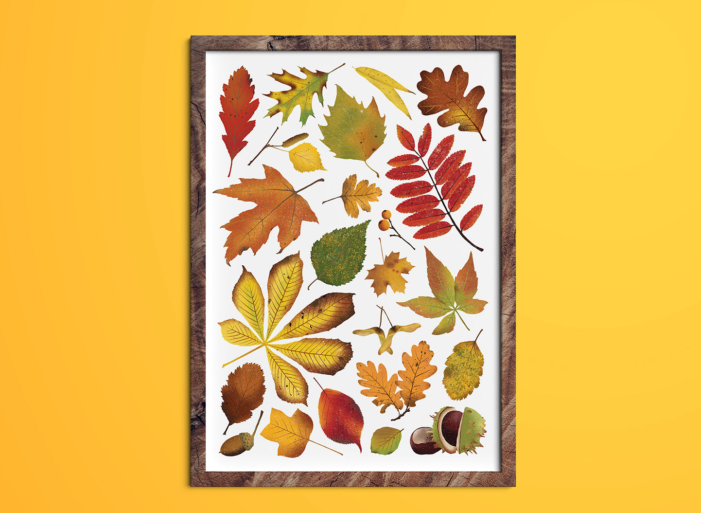 THUMBNAIL EXAMPLE - Autumn Leaves